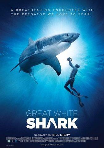 Great White Shark 4K DOCU 2013 Ultra HD 2160p