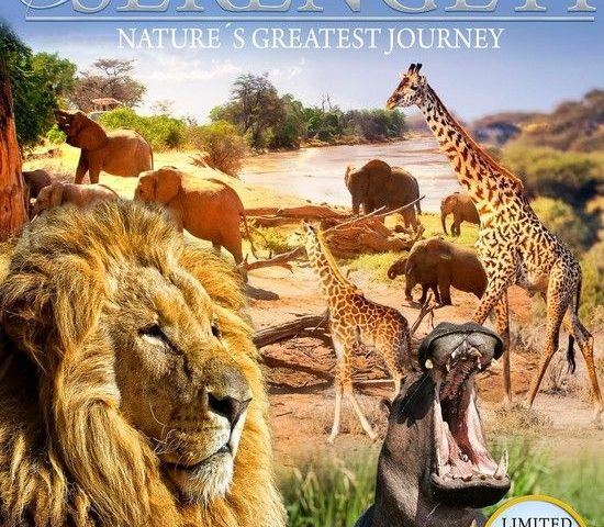 Serengeti Nature's Greatest Journey 4K 2015 Ultra HD 2160p