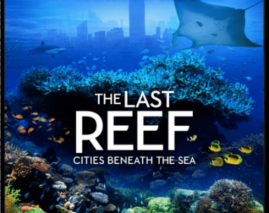 The Last Reef: Cities Beneath the Sea 4K 2012 Ultra HD 2160p