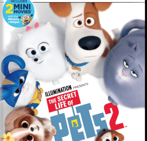 The Secret Life of Pets 2 4K 2019 Ultra HD 2160p