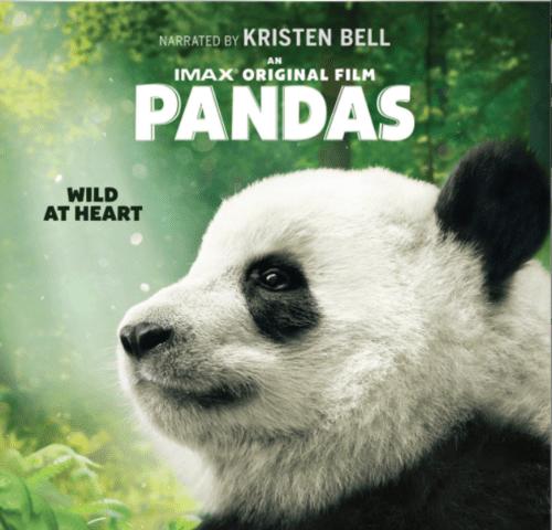 Pandas 4K 2018 DOCU