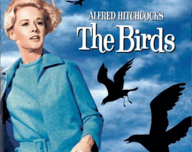 The Birds 4K 1963