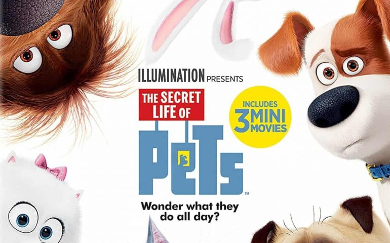 The Secret Life of Pets 4K 2016