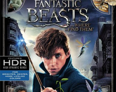 Fantastic Beasts and Where to Find Them 4K 2016